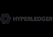 hyperledgeer